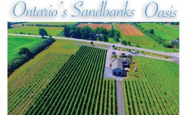 Sandbanks-featured